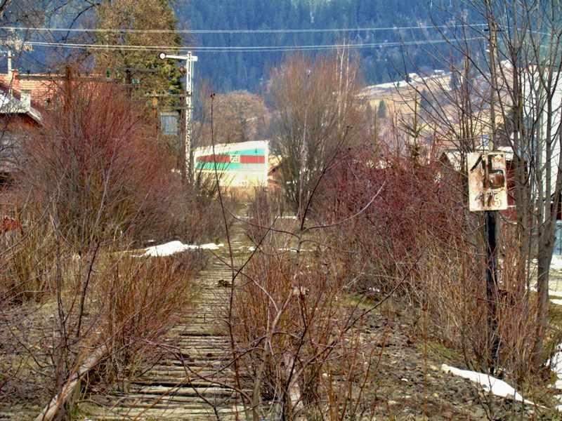 Einfahrtssignal Moldovita. 2013 hat die Natur die Strecke bereits zurückerobert © Foto: Vlad keine Nebenbahn-Romantik in Rumänien mehr