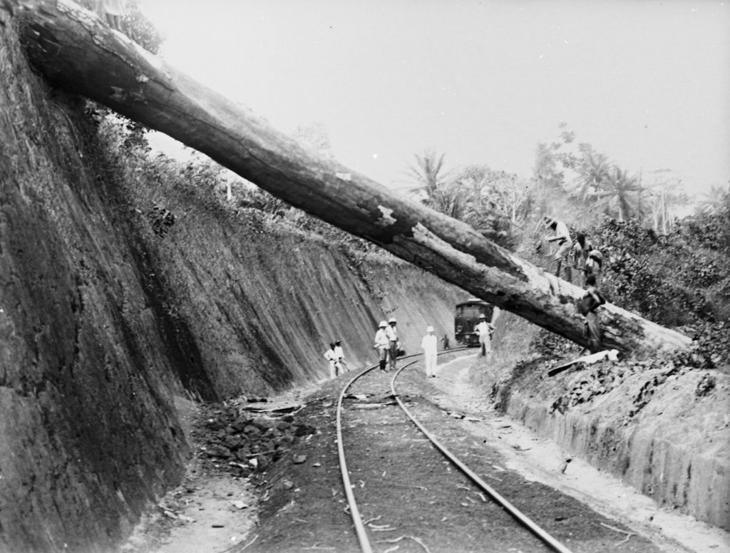 Baumstamm Schienen Kleidung Nordbahn
